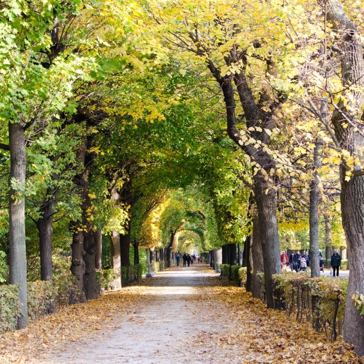 Schönbrunn | lacapocuoca