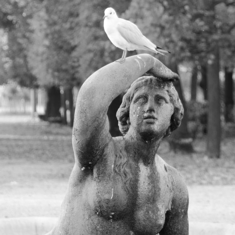 Schlosspark Schönbrunn | lacapocuoca.at