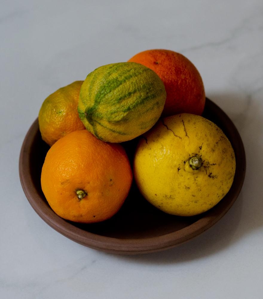 Zitrusfrüchte   lacapocuoca.at