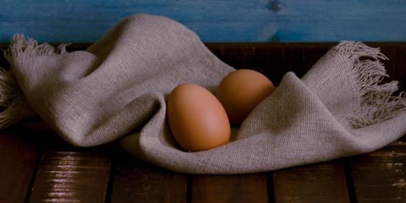 Eier   lacapocuoca.at