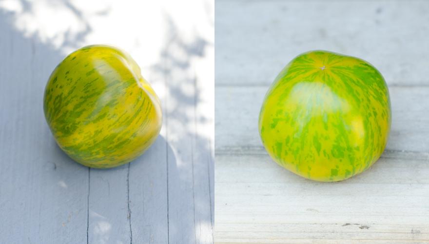 Green Zebra Tomate | lacapocuoca.at