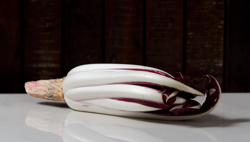 Radicchio | lacapocuoca.at