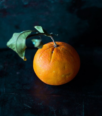 Orange | lacapocuoca.at