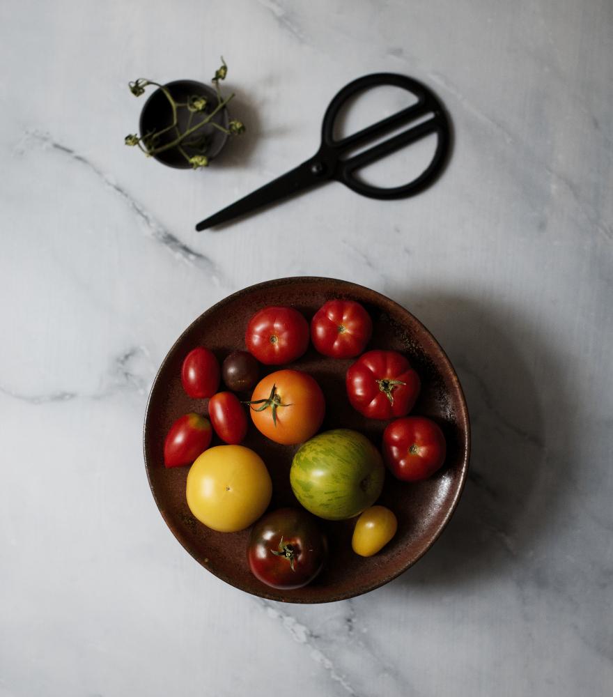 tomato2-ex