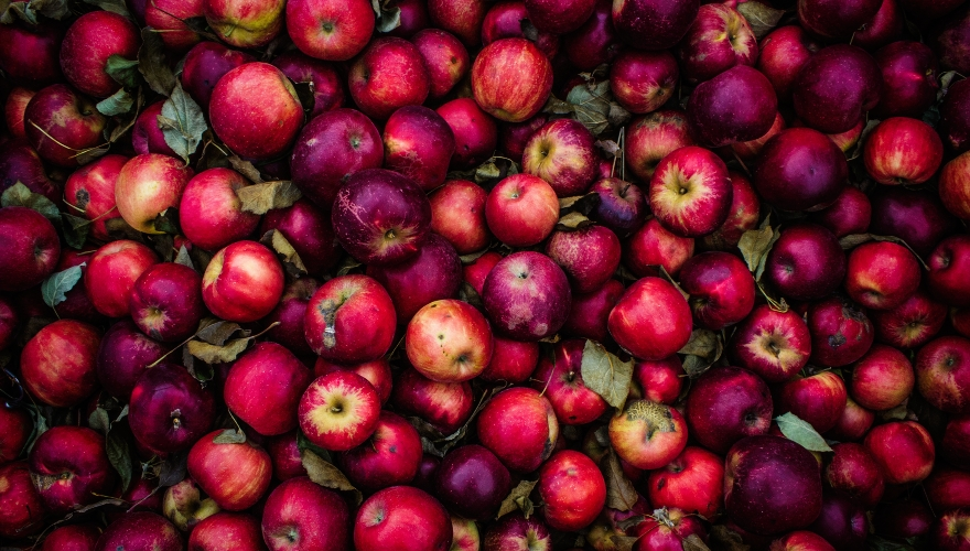 Rote Äpfel | lacapocuoca.at