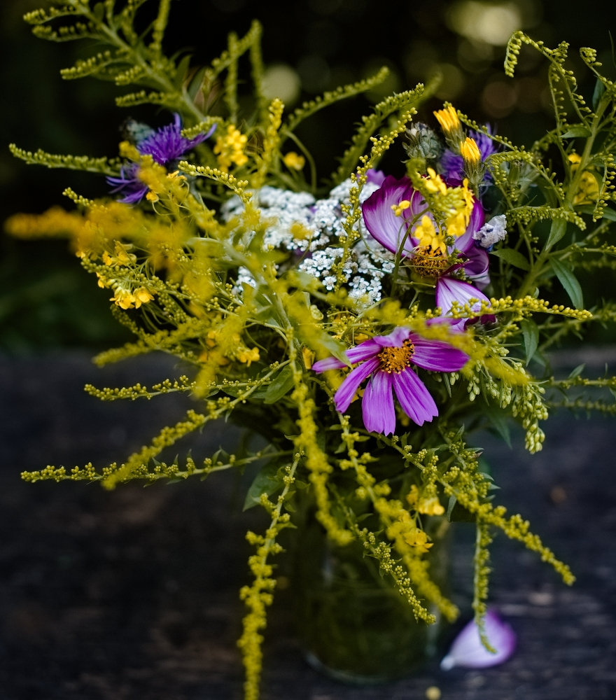 Brombeeren Lavendel Sorbet   lacapocuoca.at